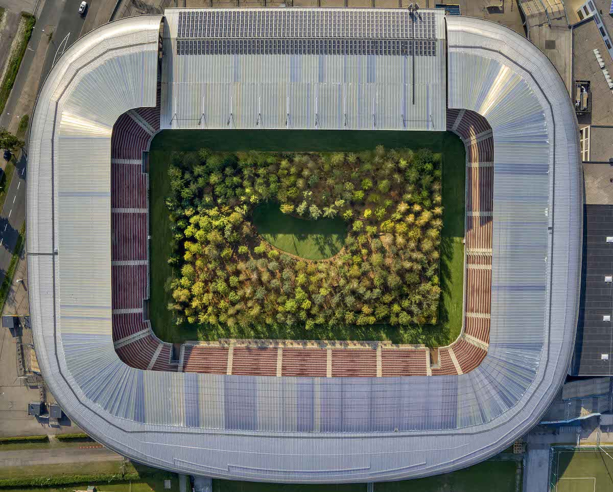 Football Stadium transformed into a lush forest